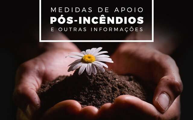 Medidas apoio p s inc ndios noticia 1 640 400